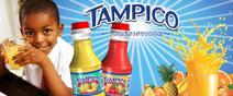 ad_tampico3_b_thumb