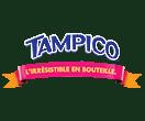 logo_tampico4